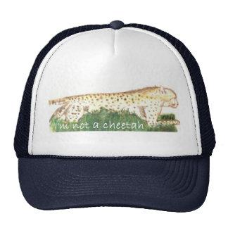 No soy un gorra del guepardo
