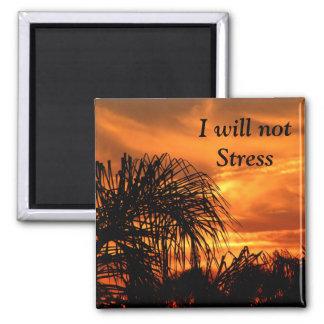 No Stress_ Magnet Magnets