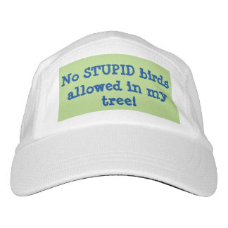 No STUPID birds allowed in my tree! Hat