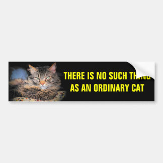 No Such Thing as an Ordinary Cat Bumper Sticker
