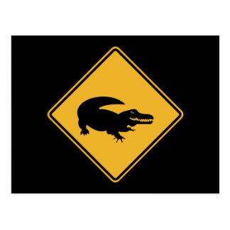 No Swimming - Alligators (1), Sign, Louisiana, US Postcard