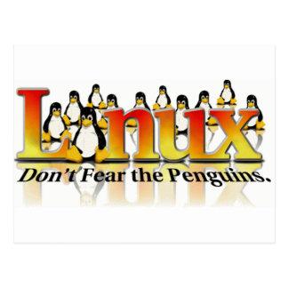 No tema los pingüinos postal