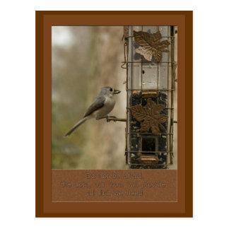 no tenga miedo que dios proporcionará el pájaro en postal