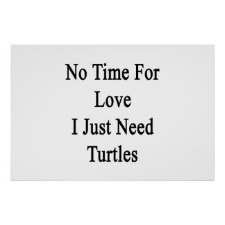 No Time For Love I Just Need Turtles Poster