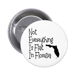No todo en la Florida es plano Pin