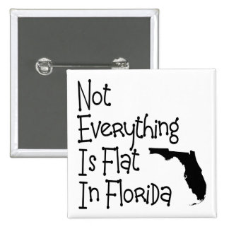 No todo en la Florida es plano Pins