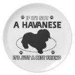 No un havanese plato para fiesta