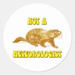 No un meteorólogo Groundhog Pegatina Redonda
