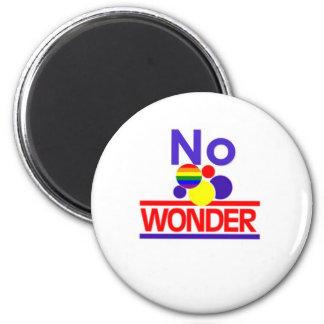 No Wonder Magnet