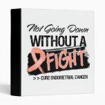 No yendo abajo sin un cáncer endometrial de la luc