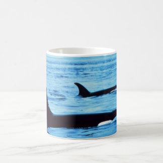 noaa de las ballenas del agujero del Taza-soplo Taza De Café