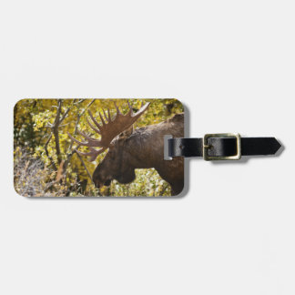Noble Bull Moose Tag For Bags
