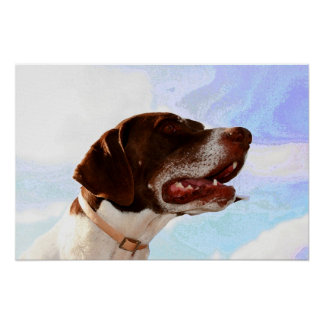 Noble german shorthaired pointer canvas print