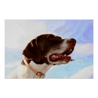 Noble german shorthaired pointer poster