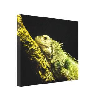 Noble Iguana Canvas
