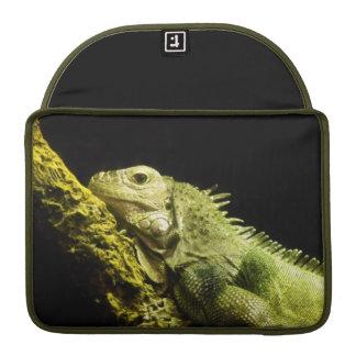 Noble Iguana MacBook Pro 13 Sleeve Sleeves For MacBooks