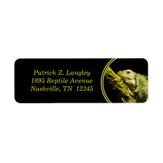 Noble Iguana Return Address Labels