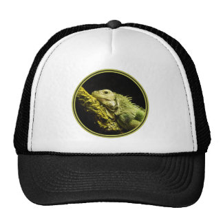 Noble Iguana Trucker Hat