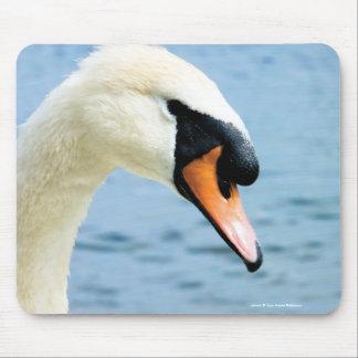 Noble Spirit   Mute Swan Photo Mousepad