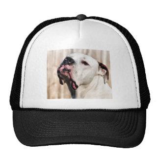 Noble Trucker Hat