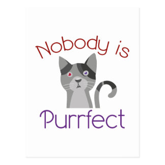 Nobody Is Purrfect Postcard