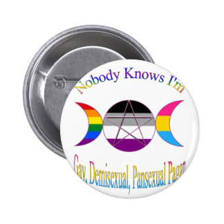 Nobody Knows I'm Gay Demisexual Pansexual Pagan Button
