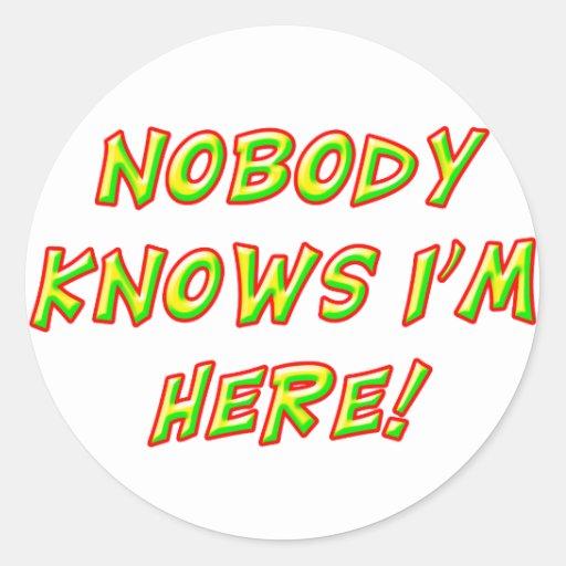 Nobody Knows I'm Here! Classic Round Sticker
