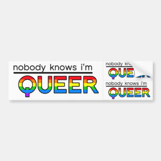 """Nobody Knows I'm Queer"" Decal (3-in-1) Bumper Sticker"