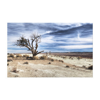 Nobody wanted land canvas print