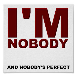 Nobody's Perfect Funny Poster