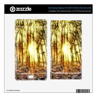 Noche ardiente para su teléfono celular samsung galaxy s II skins