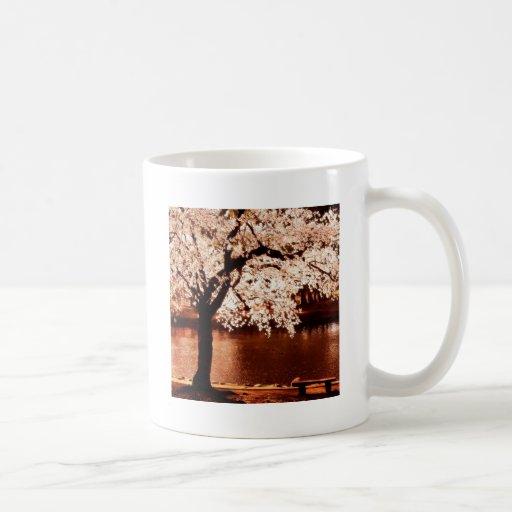 Noche blanca de los árboles de la naturaleza tazas de café