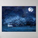 Noche de la Luna Llena en parque Poster