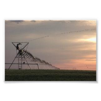 Noche de Nebraska Arte Con Fotos