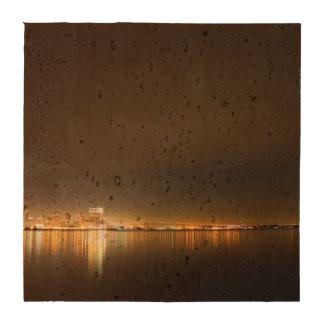 Noche del horizonte de San Diego Posavasos