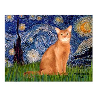 Noche estrellada - abisinio rojo tarjetas postales