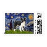 Noche estrellada - border collie (z) sello