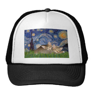 Noche estrellada - dos gatitos del Tabby Gorros Bordados