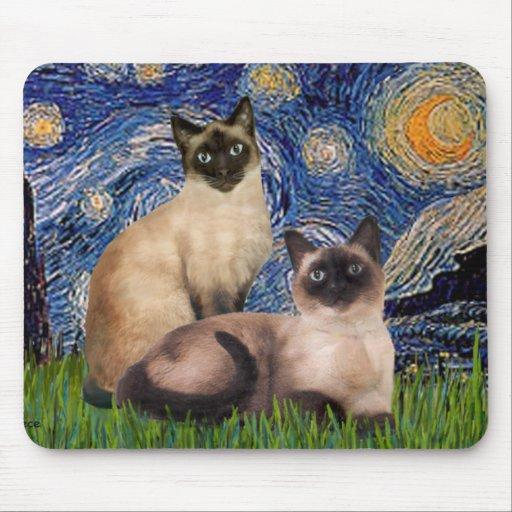 Noche estrellada - dos gatos siameses (Choc pinta) Tapete De Ratón