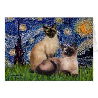 Noche estrellada - dos gatos siameses (Choc pinta) Tarjeta De Felicitación