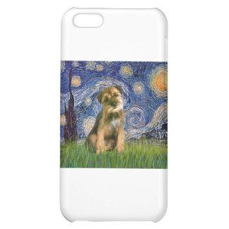 Noche estrellada - frontera Terrier #1