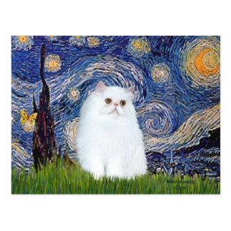 Noche estrellada - gatito persa blanco postal
