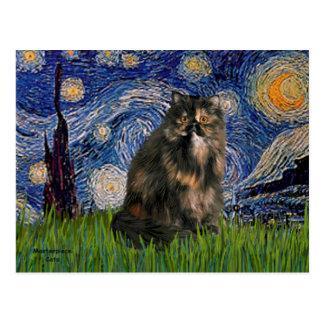 Noche estrellada - gato de calicó persa postal