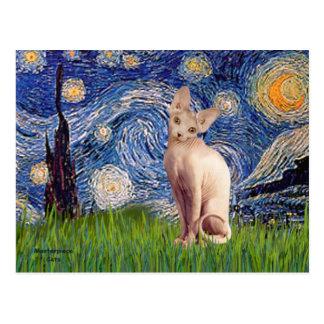 Noche estrellada - gato poner crema de Sphynx Postales