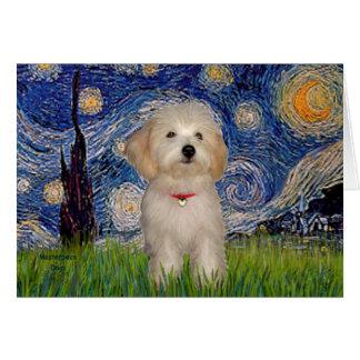 Noche estrellada - perrito de Havanese Tarjetón