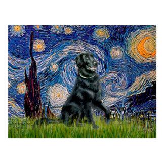 Noche estrellada - perro perdiguero revestido postales