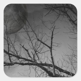 Noche misteriosa pegatina cuadrada