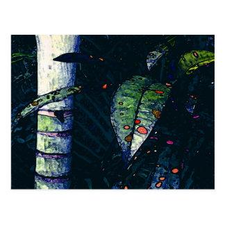 Noche tropical postal
