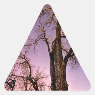 Noche y día calcomanía triangulo personalizadas