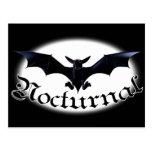 Nocturnal Bat Postcards